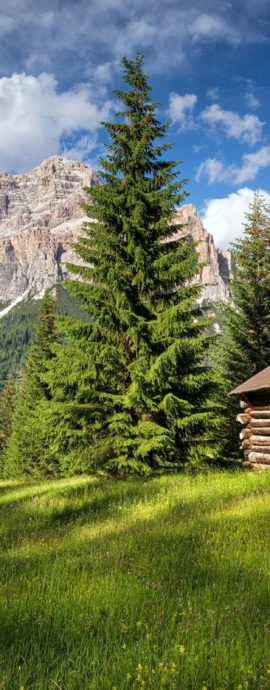 Bergwelten – Alpen